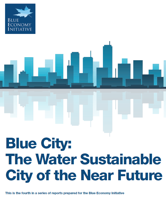 Blue City Cover cropped